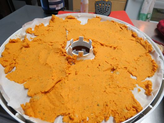 red pepper hummus dip dehydrated for backpacking