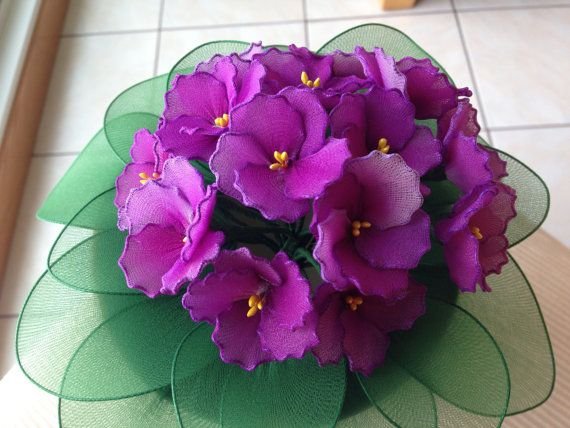 African Violet plant nyon flowers plant by TheCallendersFlowers