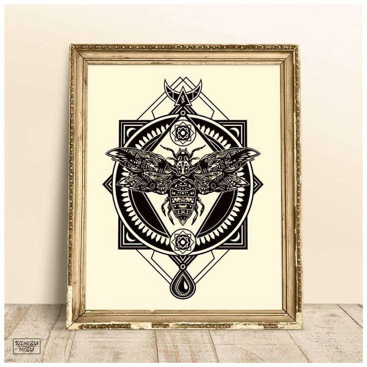 "Illustration ""Zodiac Moth"" in antique frame. Hand-made moth drawing with fineliner and digitally converted with geometrical lines.  #art #artist #decoration #homedecor #inspiration #illustration #drawing #ink #instalike #witch #shabby #schizumizu..."