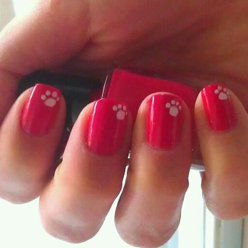 Nails nail art paws