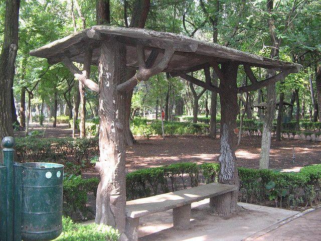 Parque México on 1001 Consejos  http://www.1001consejos.com/social-gallery/parque-mexico