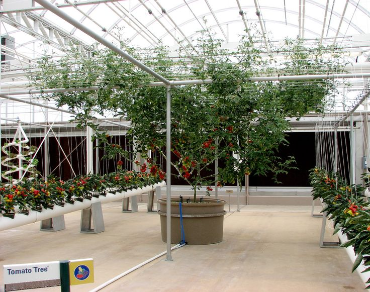 35 best images about hydroponic display gardens on for Hydro gardens
