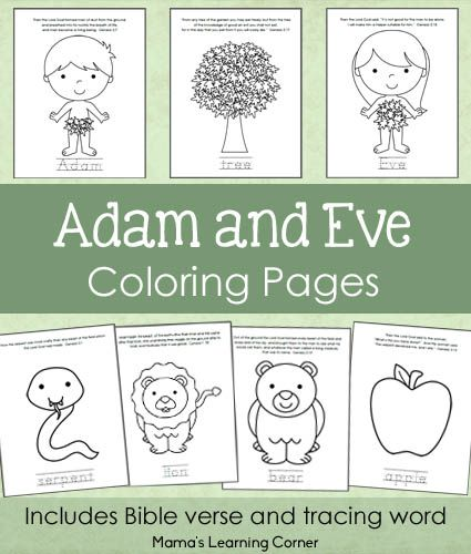 7-page set of Adam and Eve Bible Coloring Pages for Preschoolers/Kindergartners - Mama's Learning Corner