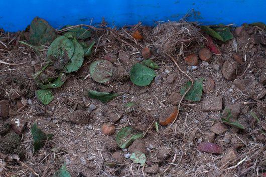 My Southwestern Life: Tutorial: Budget Compost Bin
