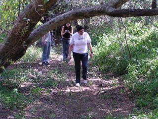 Clements Retreat | Outdoor Walks