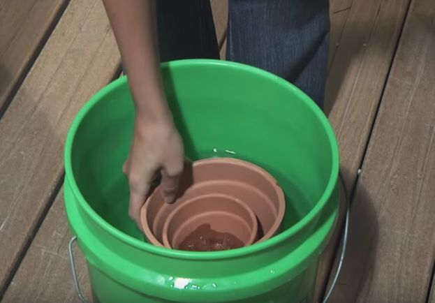 She Soaks Clay Pots In A Bucket Of Water. 1 Hour Later? So Lovely.