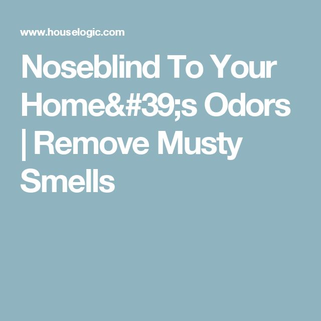 4 Funky Odors In Your House Only Your Guests Can Smell