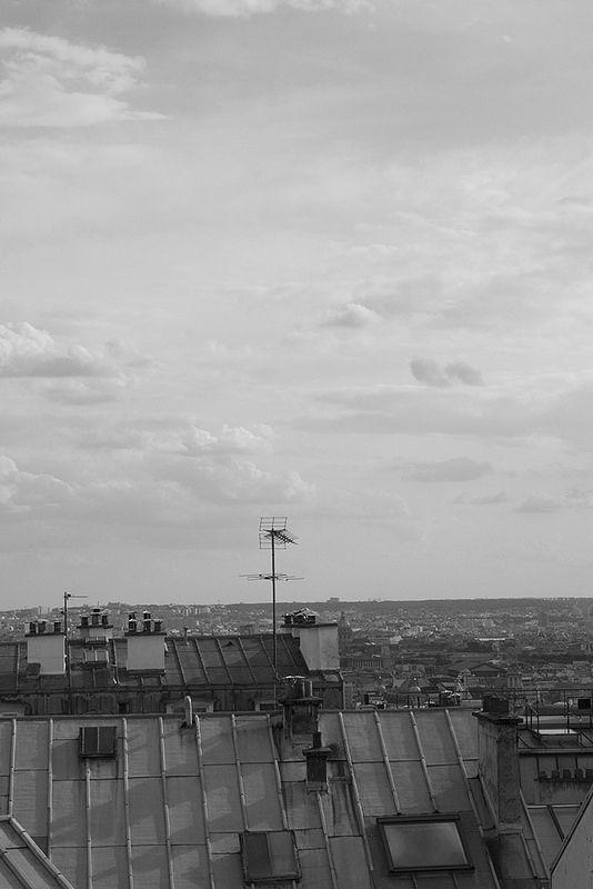 Paris roofs