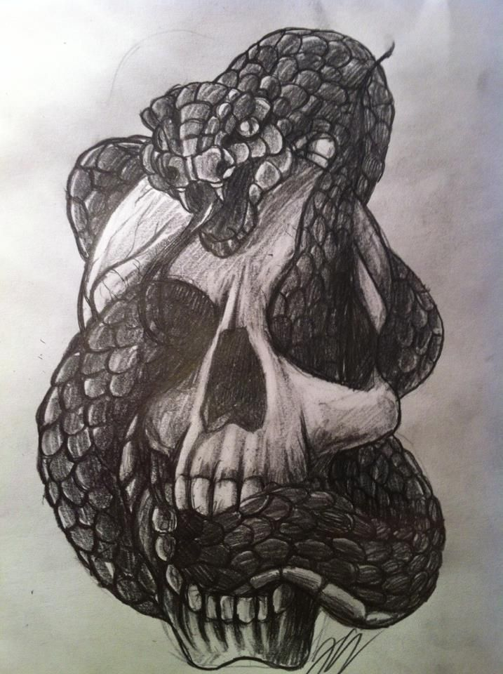 Snake And Skull By Hukkahurjadeviantart On DeviantART
