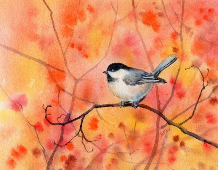 Chickadee 13  watercolor  7 x 9""