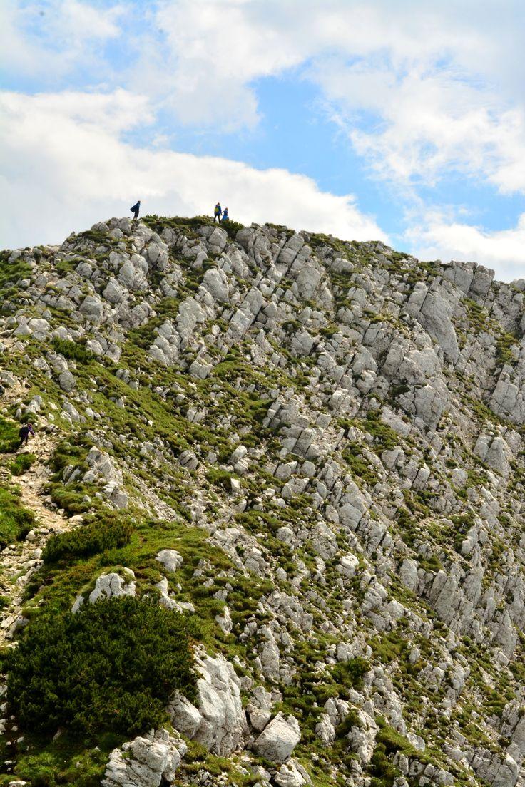 Piatra Craiului Mountains.