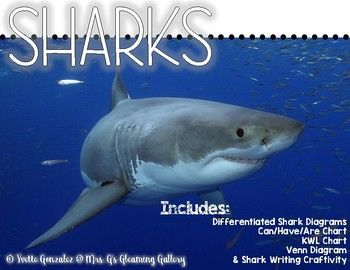 This is a great resource to use during a shark unit! My students really enjoy this during our shark week! Some suggestions:I fill out a Can/Have/Are chart as a whole group with my class, then I use the sheet to have them copy which facts they wish to use.