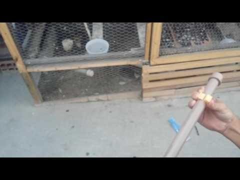 Bebedouro automático para galinha  COMO FAZER INSTALAÇÃO - YouTube