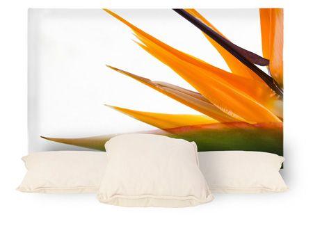 Cabeceros de cama personalizados con la foto que quieras