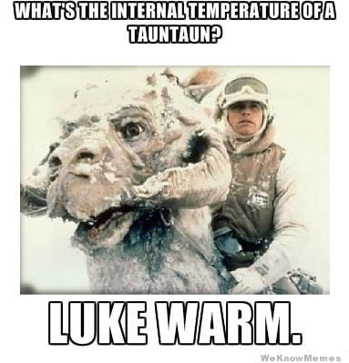 whats-the-internal-temperature-of-a-taun-taun.jpg (383×399)