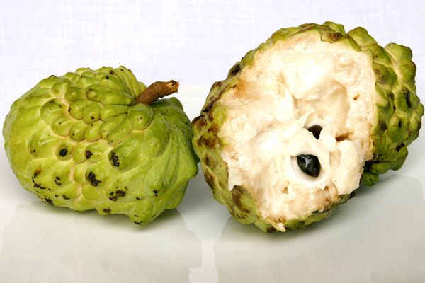 Cherimoya Taxonomic Name: Annona cherimola Common Names: Custard Apple (English), Cherimoya (Colombia), sape-sape (Angola), Laxmanphal or Sharifa (Inida), Mãng cầu tây (Vietnam), Quishta (Egypt), Srikaya (Indonesia) Country of Origin: Peru Description: Like a slightly less, slightly larger and firmer version of the Anón. Aroma of pineapple and pear. It's ripe when very soft or almost falling apart.
