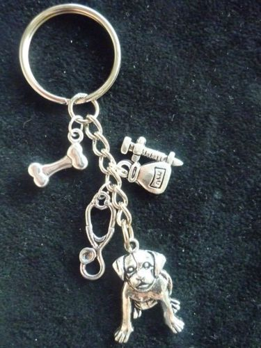 Vet-Keyring-Veterinary-Surgeon-Veterinary-Nurse-Veterinary-Student-Gift