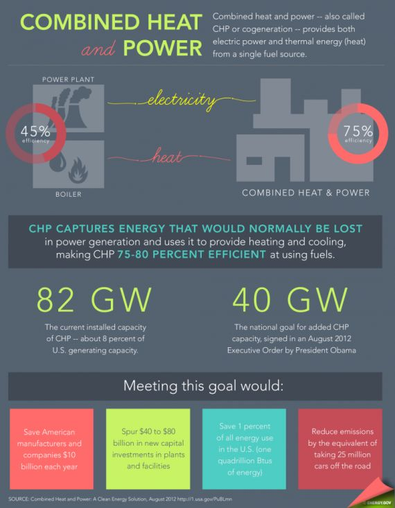 Cogeneration Goes Global