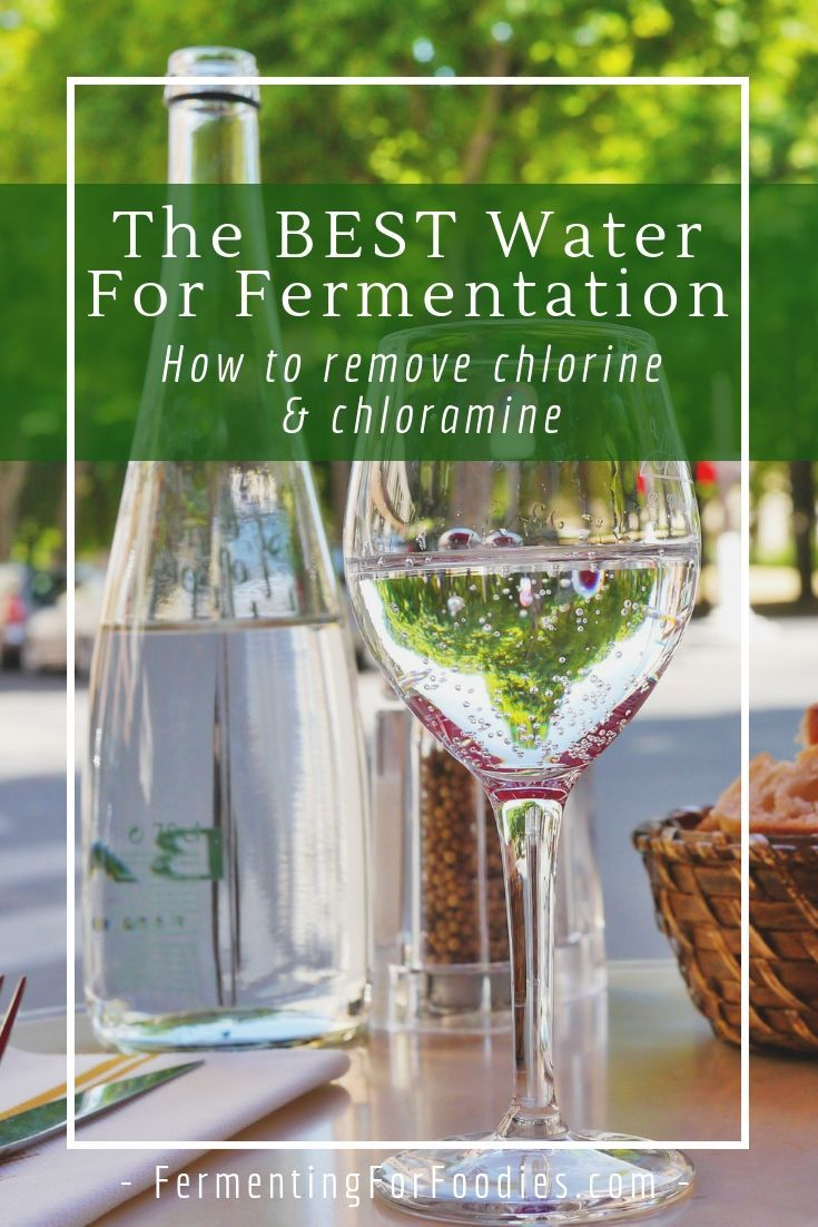 How To Filter Water For Fermentation Water Filter Kombucha Fermented Foods