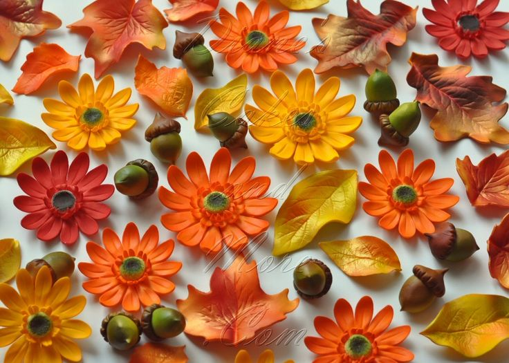 78 best images about fall cake ideas on pinterest fall for Autumn cake decoration