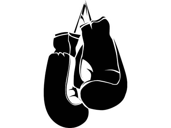 Boxing Gloves 2 Ring Fight Fighting Mixed Martial Arts