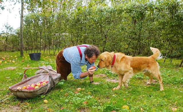 Monty Don feared the worst when his beloved retriever Nigel was ...