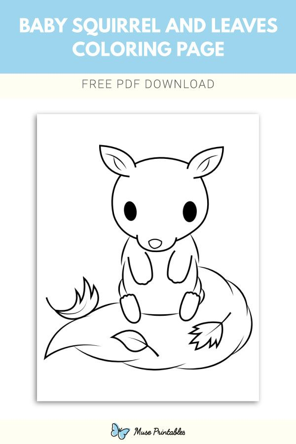 Free printable baby squirrel and leaves coloring page ...