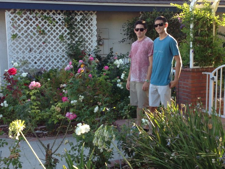 Max and Jake at  Brookdale. I had a lot of fun in that garden.