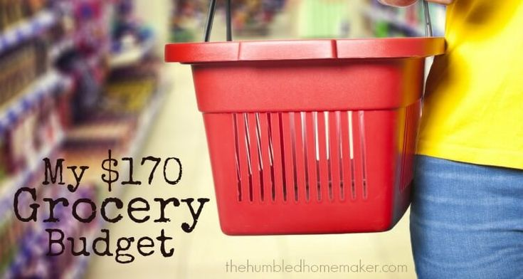 Find out how I kept my $170 grocery budget, get tips for doing your own grocery budget challenge, plus a 1-week sample meal plan that shows what we ate.