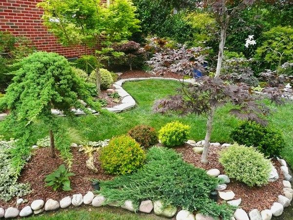 My garden maple garden in ohio garden design calimesa ca for Garden design with japanese maple