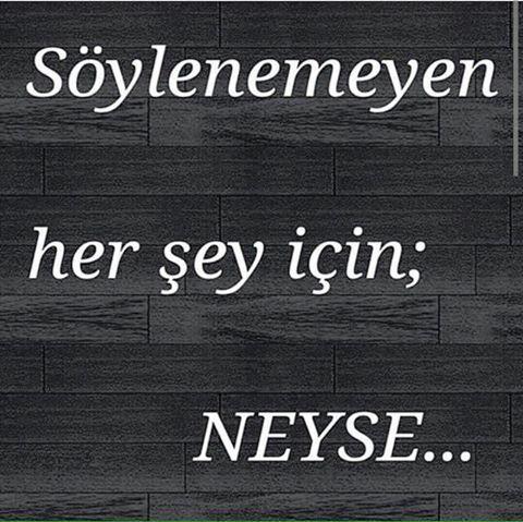 Söylenemeyen her şey için = NEYSE...