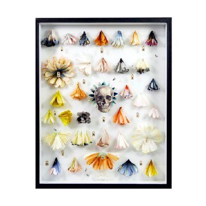 Lyndie Dourthe Exposition Mirabilia, Galerie 3e Parallèle, 66 rue Notre dame de Nazareth, 75003 PARIS.