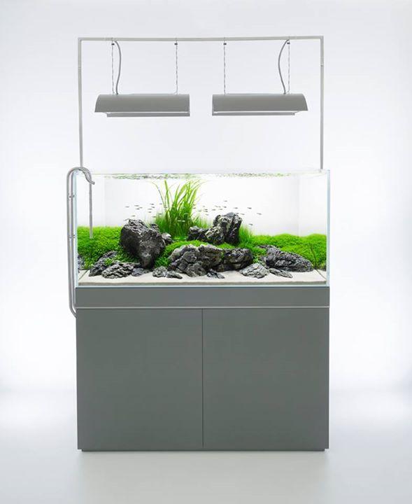 Pin by Aqua Poolkoh from Facebook Page : Aquarium Design ...