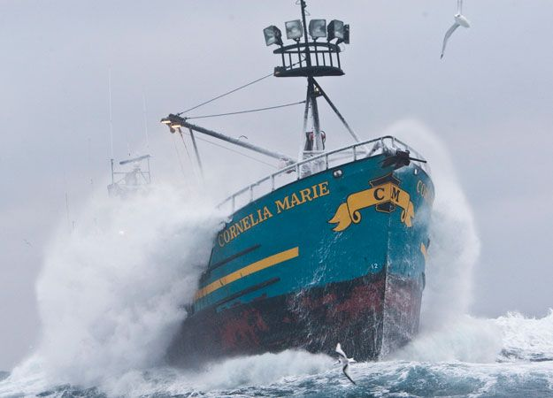 Deadliest Catch (2014) : Discovery Channel