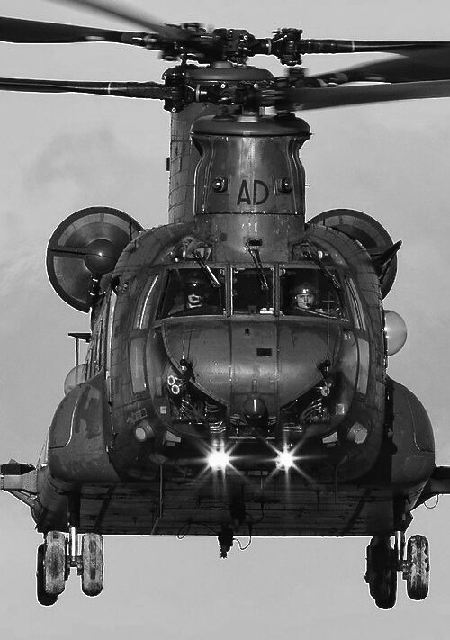 Chinook with awesome close up details  unlike other photos I've seen ♡