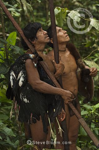 Jungle Tribe People 17 Best images ...