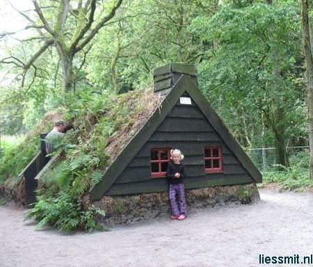 Cob, cabins, green roof, small house