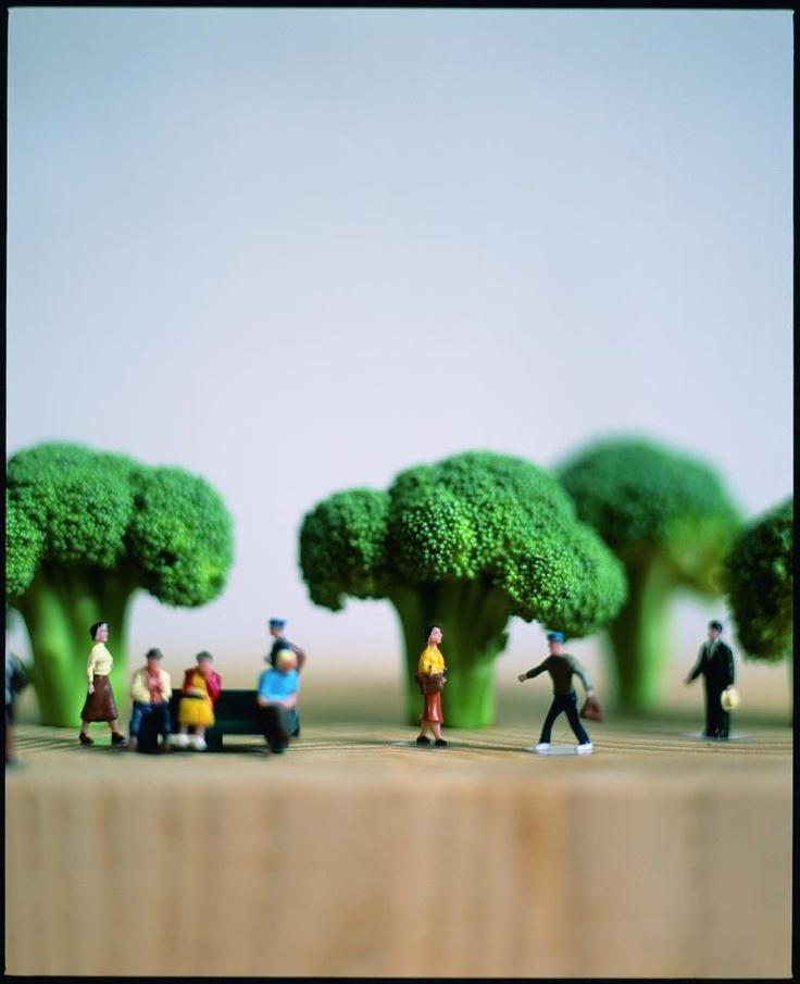 broccoli town