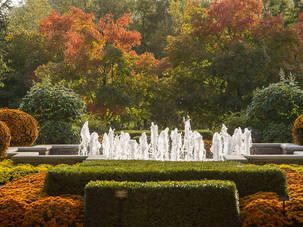 Chicago Botanic Garden - The best places to see fall foilage in Chicago