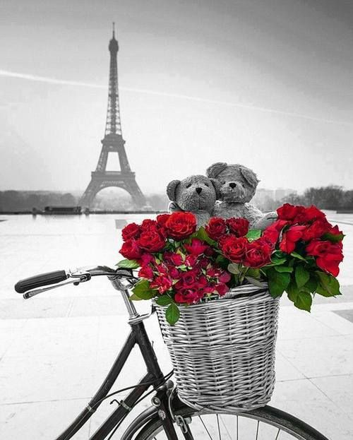 A la Paris- One day I'll be there with my partner to celebrate this special event<3         www.facebook.com/loveswish #PANDORAvalentinescontest