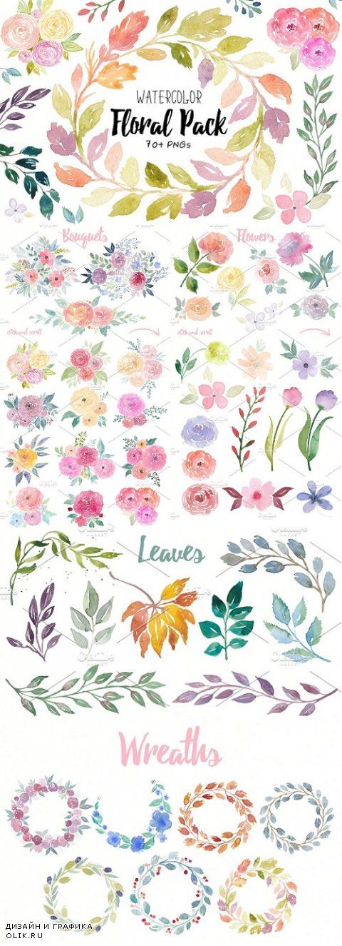 Floral Watercolor Collection - 1006122