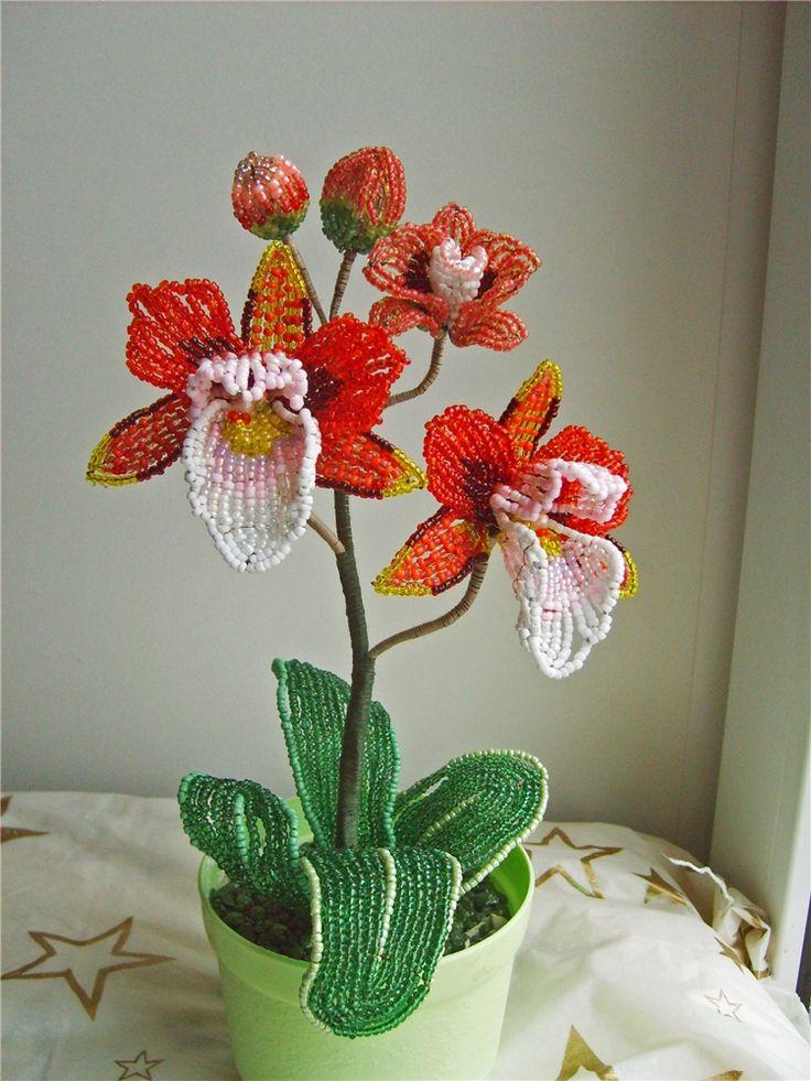 картинка орхидея из бисера