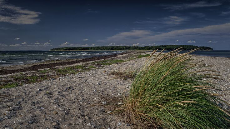 Æbelø - Brådet | Flickr - Photo Sharing!