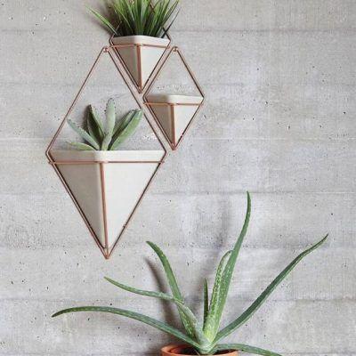 O Vaso Losango fica lindo em qualquer canto da casa, e pode ser usado como porta trecos também. Tamanho: 23 x 9 x 38 cm Material: Resina de concreto e Cobre R$187,50 http://storehousehomedecor.com.br/produto/vaso-losango-grande/