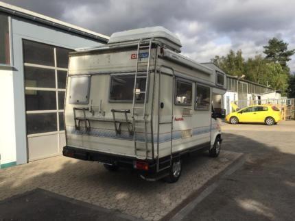 CI Wilk MC 515 Aventura in Rheinland-Pfalz - Kretz   eBay Kleinanzeigen
