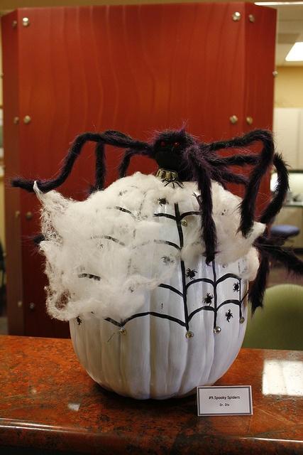 72 Best Bloom Pumpkin Contest Images On Pinterest