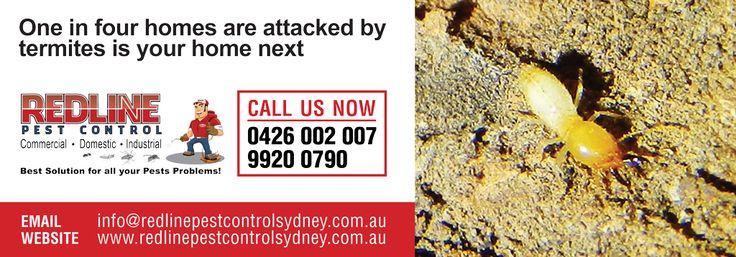 Outlook.com - redlinepestcontrol@live.com.au