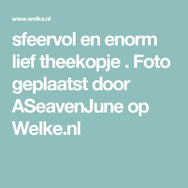 sfeervol en enorm lief theekopje . Foto geplaatst door ASeavenJune op Welke.nl