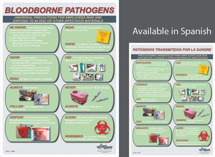 Workplace Bloodborne Pathogens Training Video school