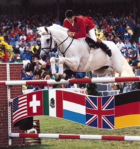 Read More: sports · leisure · dressage · horse show ...